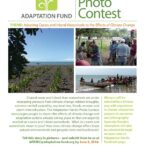 How the Adaptation Fund AF Photo Contest helps Jamaica's Coastal Resources
